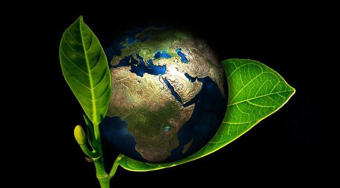 earth on leaf