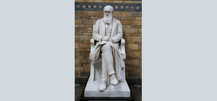 The Impotence of Darwinism